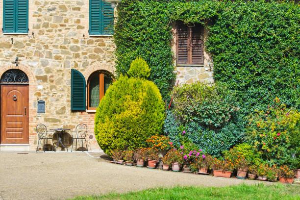 pflanzen in einem innenhof - rustikaler hinterhof stock-fotos und bilder
