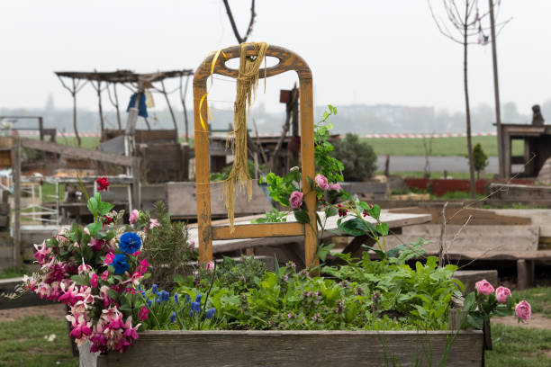 kübelpflanzen im garten ein schurke von berliner bürgern auf dem ehemaligen flughafen tempelhof - berlin tempelhof stock-fotos und bilder