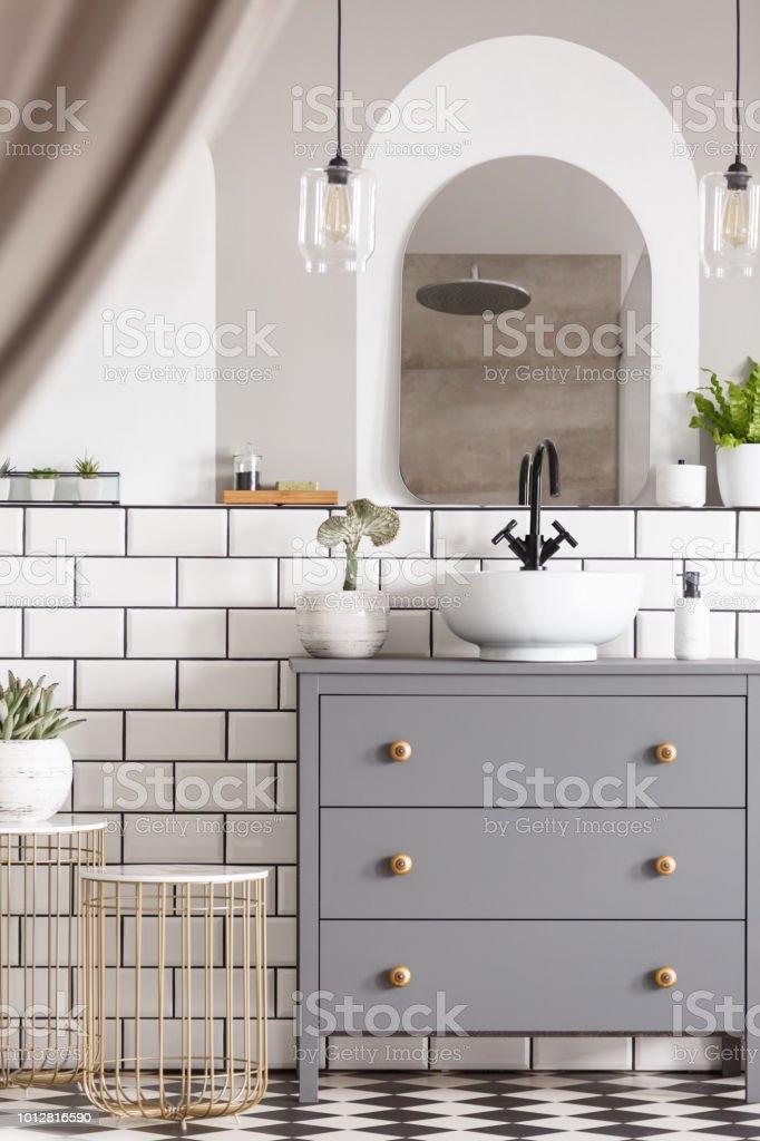 Plantas En Interior Luminoso Cuarto De Baño Con Espejo Sobre ...