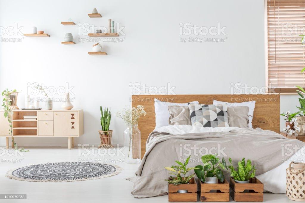 Pflanzen Vor Holzbett Innen Weisse Schlafzimmer Mit Teppich In Der Nahe Von Schrank Echtes Foto Stockfoto Und Mehr Bilder Von Bett Istock