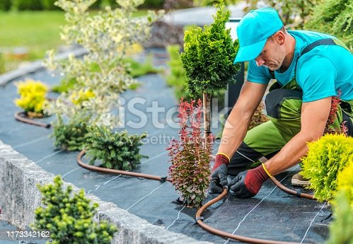 Professional Caucasian Gardener Building Plants Irrigation System in Developed Garden. Industrial Theme.