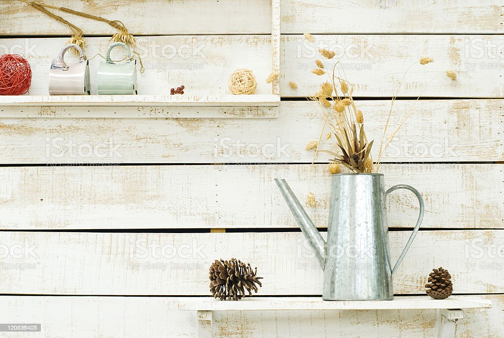 Plants on white rough wooden wall as Decoration royalty-free stock photo