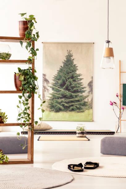 pflanzen auf holzregalen im flachen innenraum mit hockern, schuhe, matte und diy-plakat. echtes foto - flip flops reparieren stock-fotos und bilder