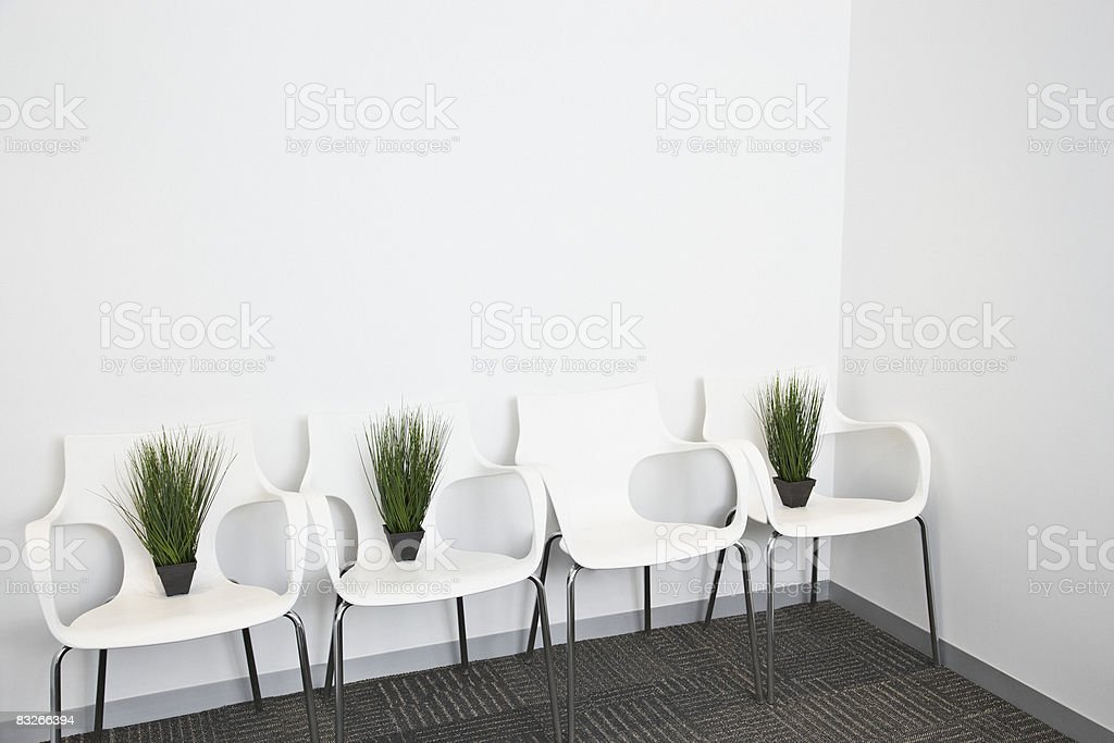 Plants placed on modern office chairs royalty-free stock photo