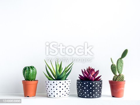 istock Plants pot. Empty modern painted concrete planter. 1249953995