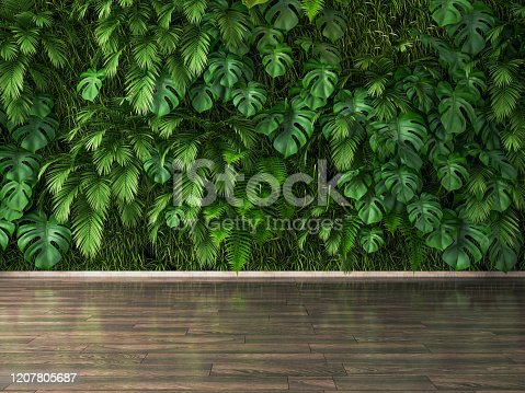 Plants Wall And Parquet Floor