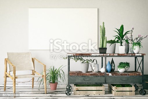 Plants with a blank canvas