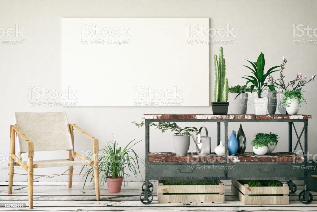 Plants with Canvas stock photo