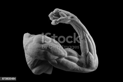 665487076 istock photo plaster anatomical arm. statue of a human hand 870605484