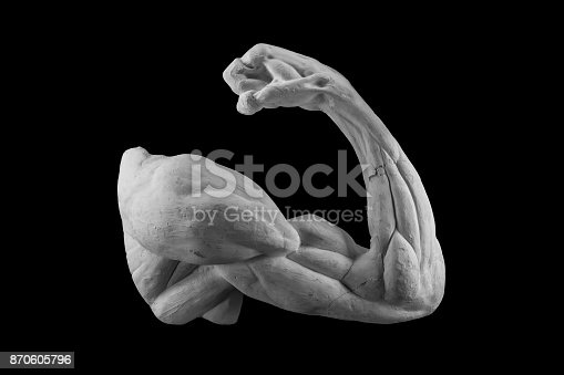 665487076 istock photo plaster anatomical arm. statue of a human hand 870605796