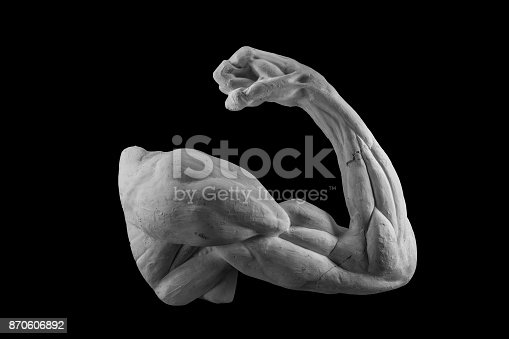 665487076 istock photo plaster anatomical arm. statue of a human hand 870606892
