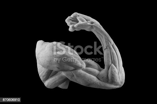 665487076 istock photo plaster anatomical arm. statue of a human hand 870606910