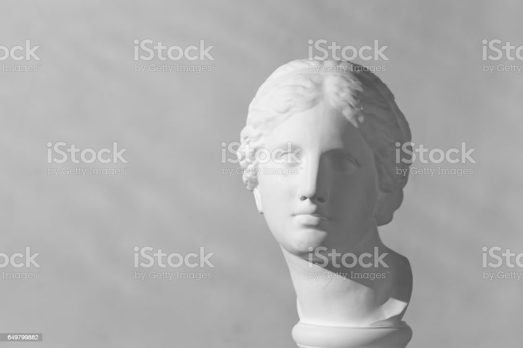 Plaster head of Aphrodite vector art illustration