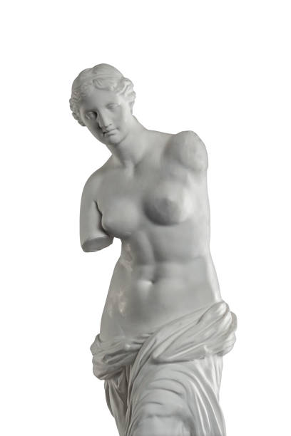 plaster sculpture of venus on a white background, gypsum - statua foto e immagini stock