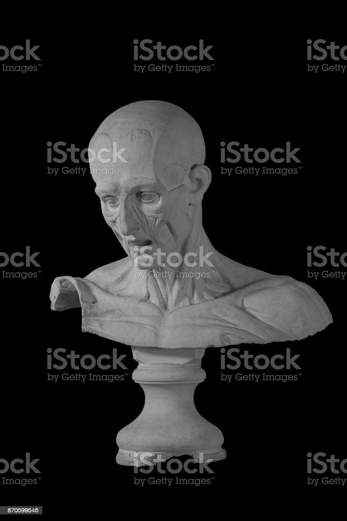 Fotografía de Estatua De Un Hombre Desnudo De Yeso Con Formados ...