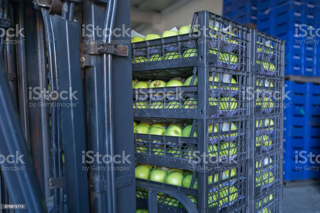 Plastic Apple Crates With Apples on a Forklift stock photo