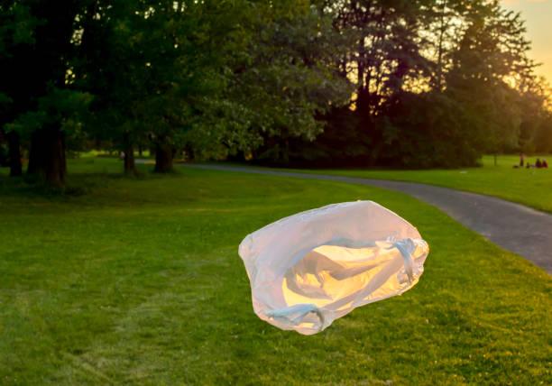 plastiktüte schwimmt an einem sonnigen tag in einem park - windbeutel stock-fotos und bilder