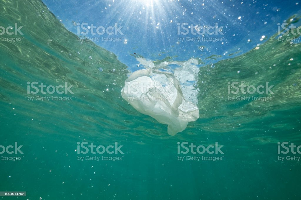 Plastic bag floating in the sea. stock photo