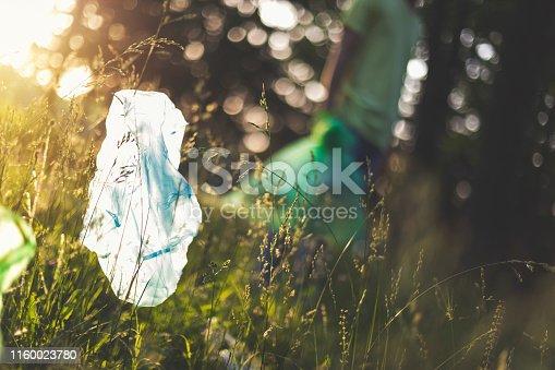 istock Plastic Bag In Nature 1160023780