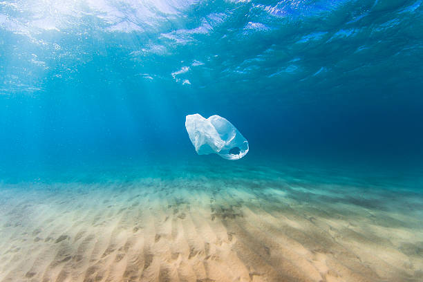 Plastic bag pollution in ocean stock photo