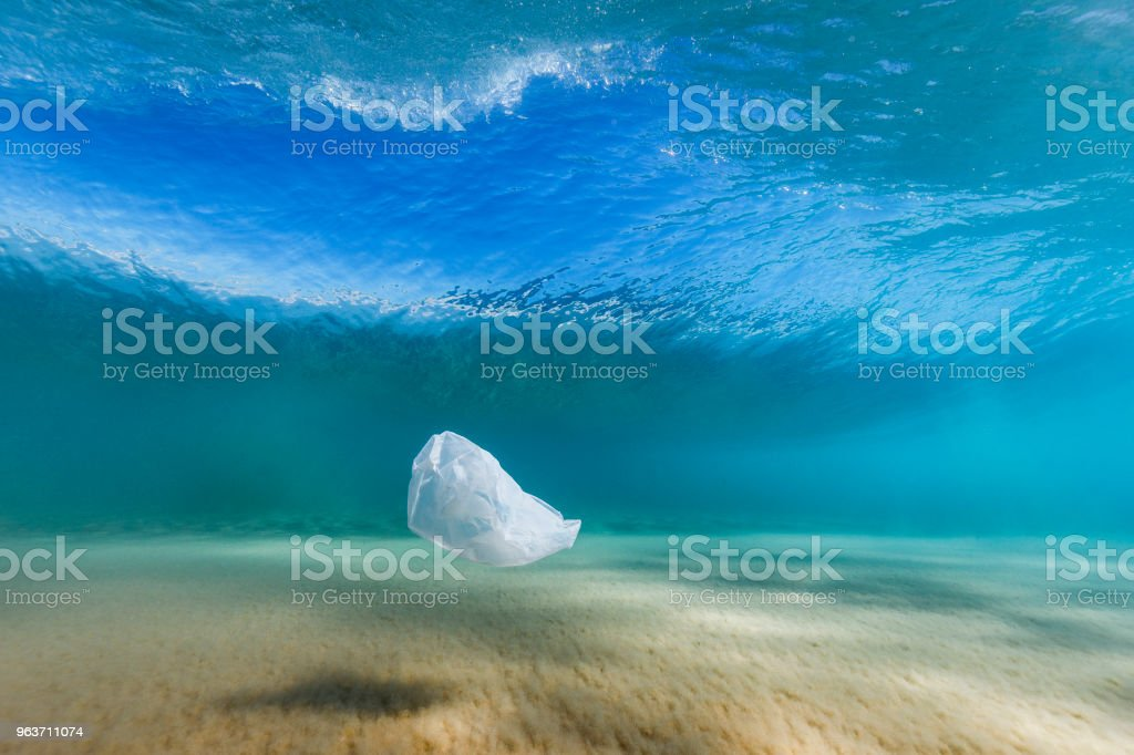 Plastic bag pollution in the ocean stock photo