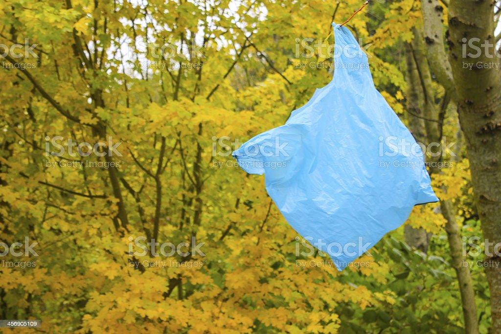 Plastic Bag Stuck on a Tree - Environmental Problem stock photo
