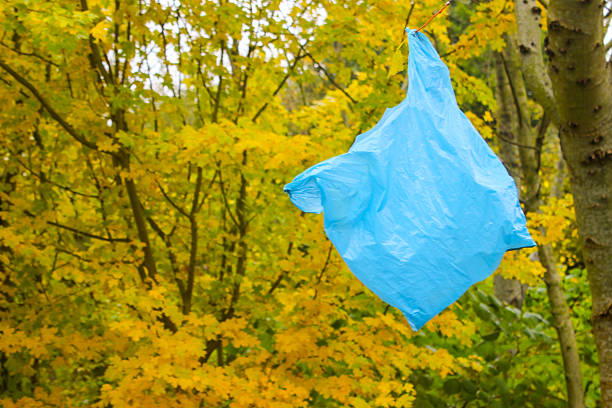 plastiktüte saß auf einem baum-umweltproblem - windbeutel stock-fotos und bilder