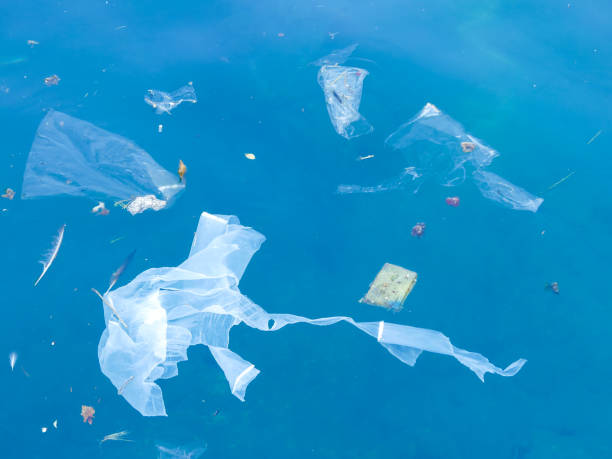 plastic bags and debris floating in the sea plastic pollution floating in the sea floating on water stock pictures, royalty-free photos & images