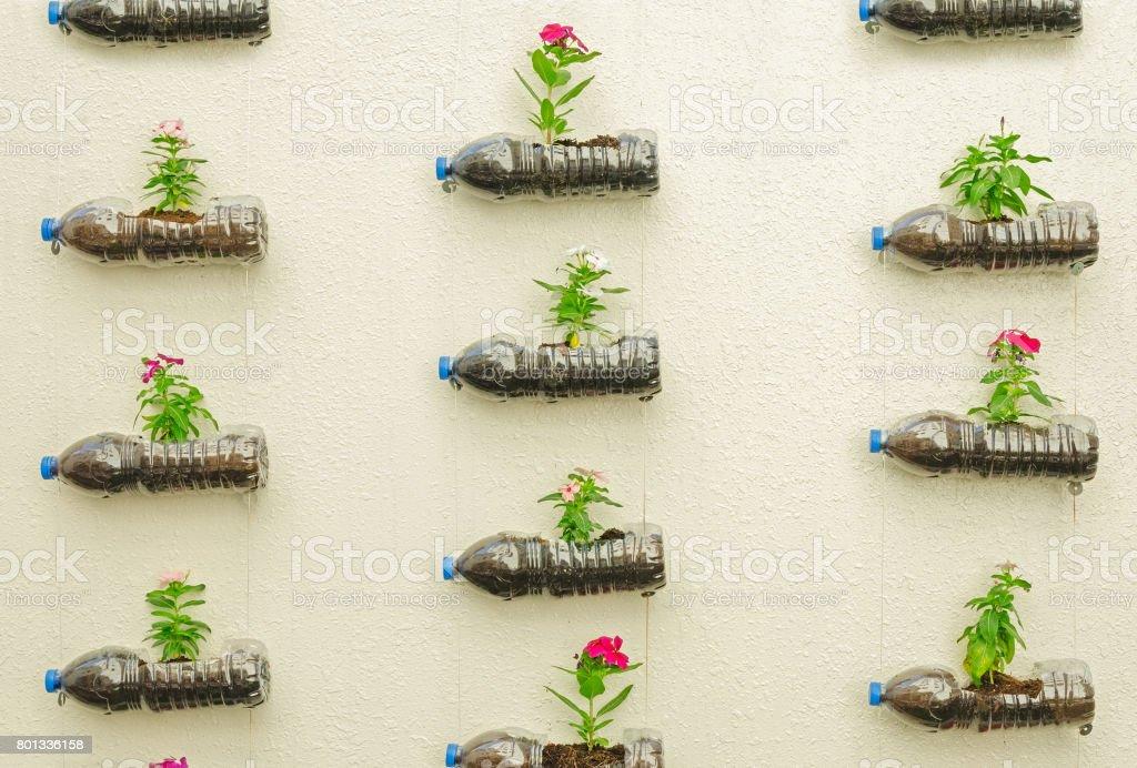 Botella de plástico de flores - foto de stock