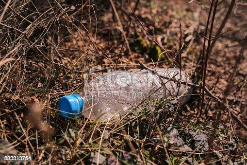 istock plastic bottle on the nature 833313754