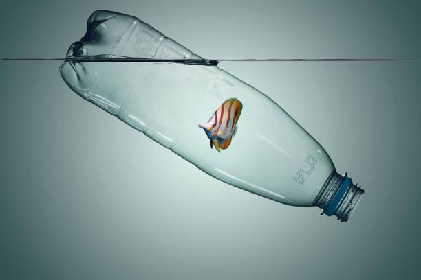 Plastic bottle with fish pollution that floats in the ocean picture id1166594417?b=1&k=6&m=1166594417&s=612x612&w=0&h=yljwlyrddgc4mcjl63hnljllcltbnko2xbm6nxggjto=