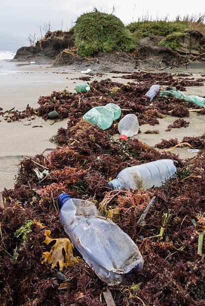 Frascos de plástico en la playa - foto de stock