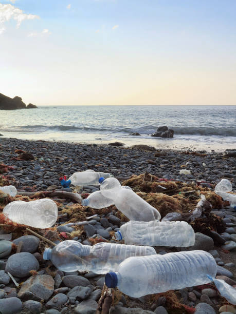 plastic bottles washed on the atlantic shoreline or beach polluting the environment in northern spain - major ocean stock pictures, royalty-free photos & images