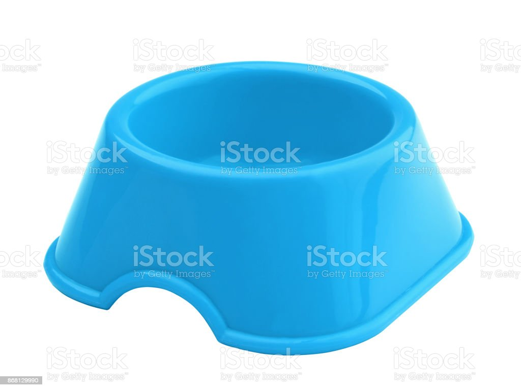 Plastic bowl for animals isolated stock photo