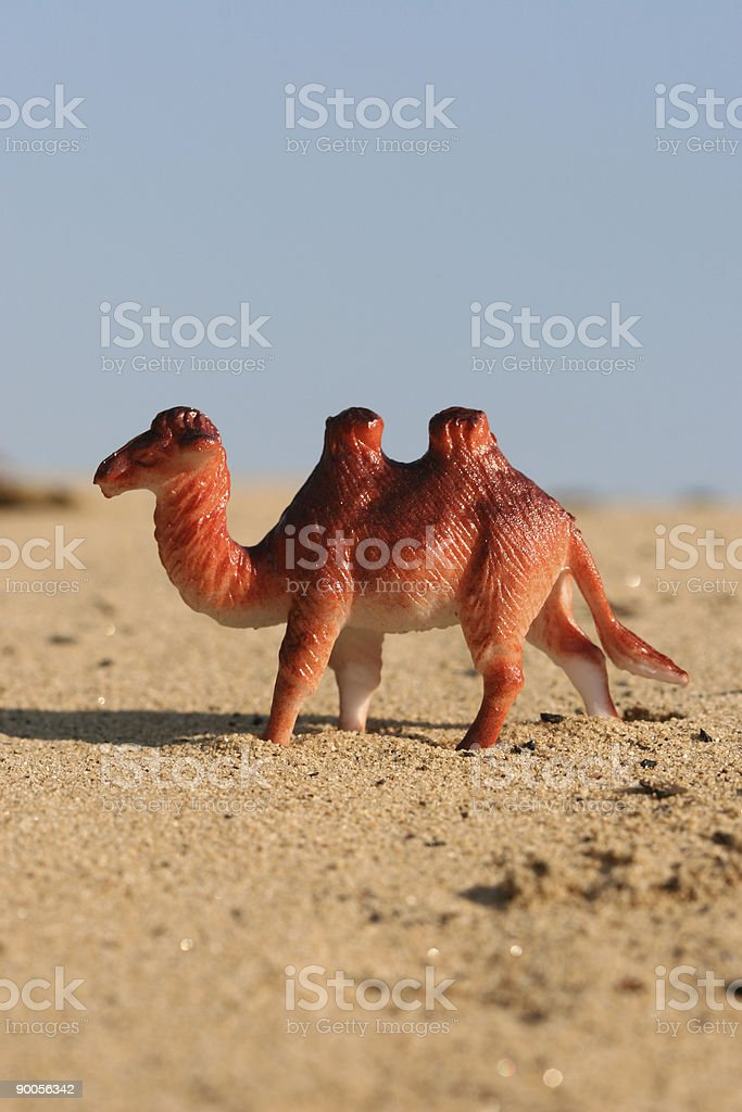 Plastic Camel in Desert stock photo