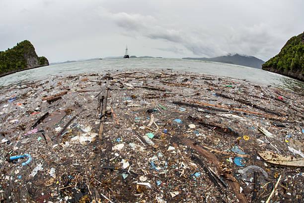 lixo na praia de plástico - oceano pacífico imagens e fotografias de stock