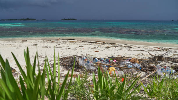 Plastic garbage on paradise uninhabited islands of archipelago San Blas stock photo