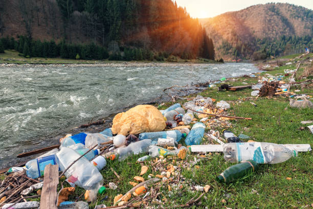 plastic garbage on the river bank - pollution stock pictures, royalty-free photos & images