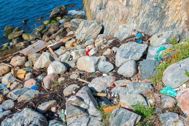 plastic garbage on the sea shore - bohuslän nature bildbanksfoton och bilder