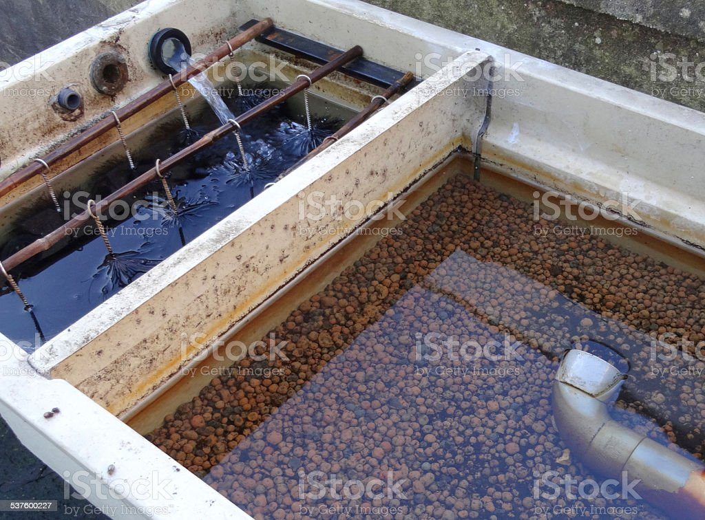 Plastic garden pond filter koi carp filtration brushes and for Garden pond gravel