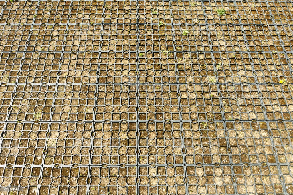 plastic grid for ecological parking on the grass, background stock photo