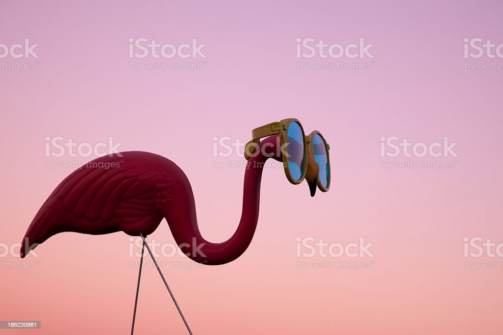 Plastic Pink Flamingo on a Lawn at Sunset stock photo