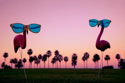 Plastic Pink Flamingos at Sunset