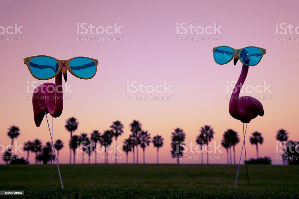 Plastic Pink Flamingos at Sunset stock photo