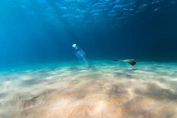 Plastic pollution affects sea life picture id612268574?b=1&k=6&m=612268574&s=612x612&w=0&h=l0plsolnjza7l3io16naoxkfsl7scmjneezaxdz 4j4=