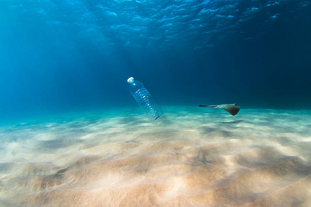 Plastic pollution affects sea life stock photo