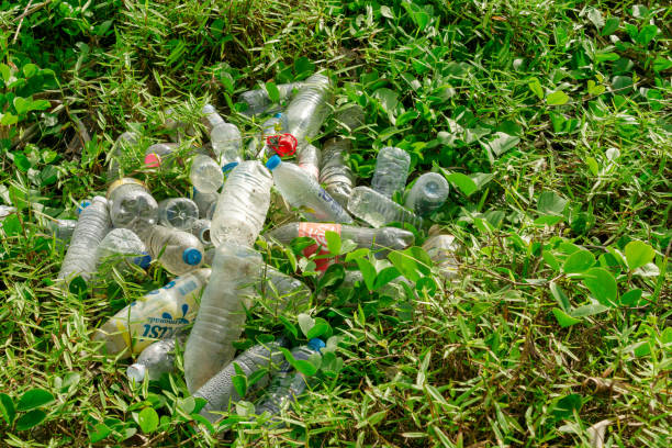 Plastic pollution discarded bottles garbage on grass stock photo