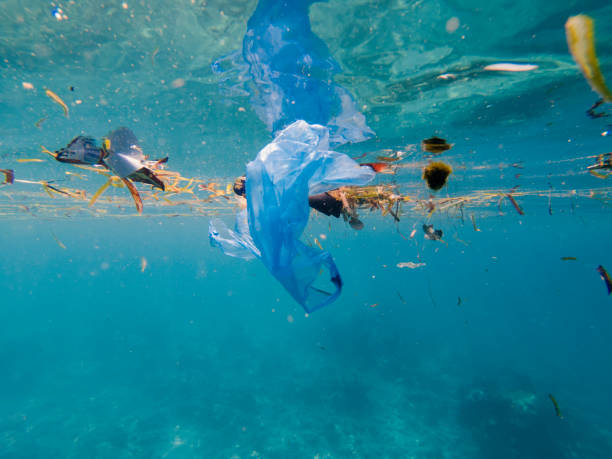 Plastic pollution on marine environment stock photo