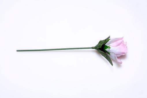 Plastic rose, elevated view