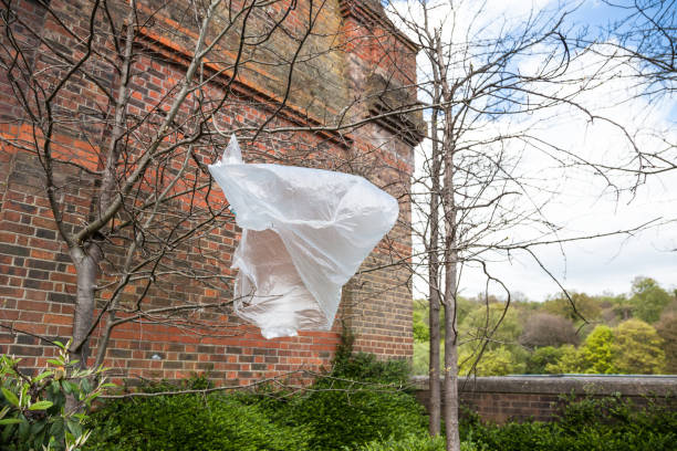 plastik müll, schlechte wehen im wind in ästen gefangen - windbeutel stock-fotos und bilder
